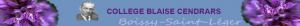 bandeau Blaise Cendrars